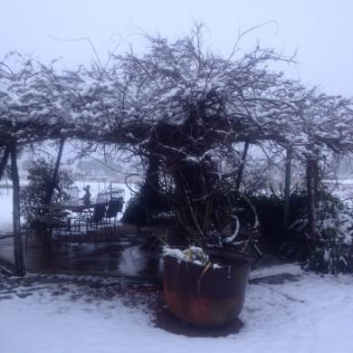 Ju-snow-1
